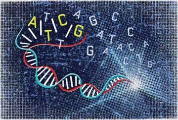 genes-brunch